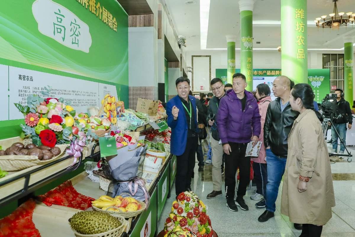 潍坊市农产品品牌推介展销会亮点纷呈,潍坊农品走向全国市场
