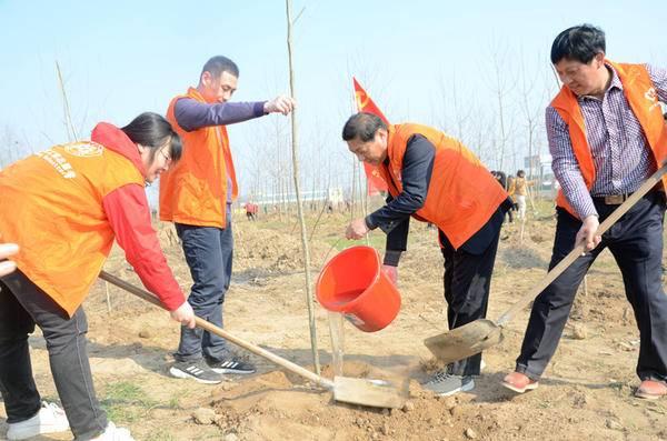 徐州移动忙三月 义务植树添新绿