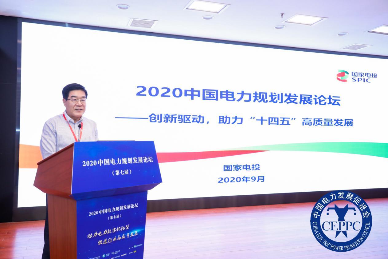 国家电力投资集团公司专家委员会主任王东伟