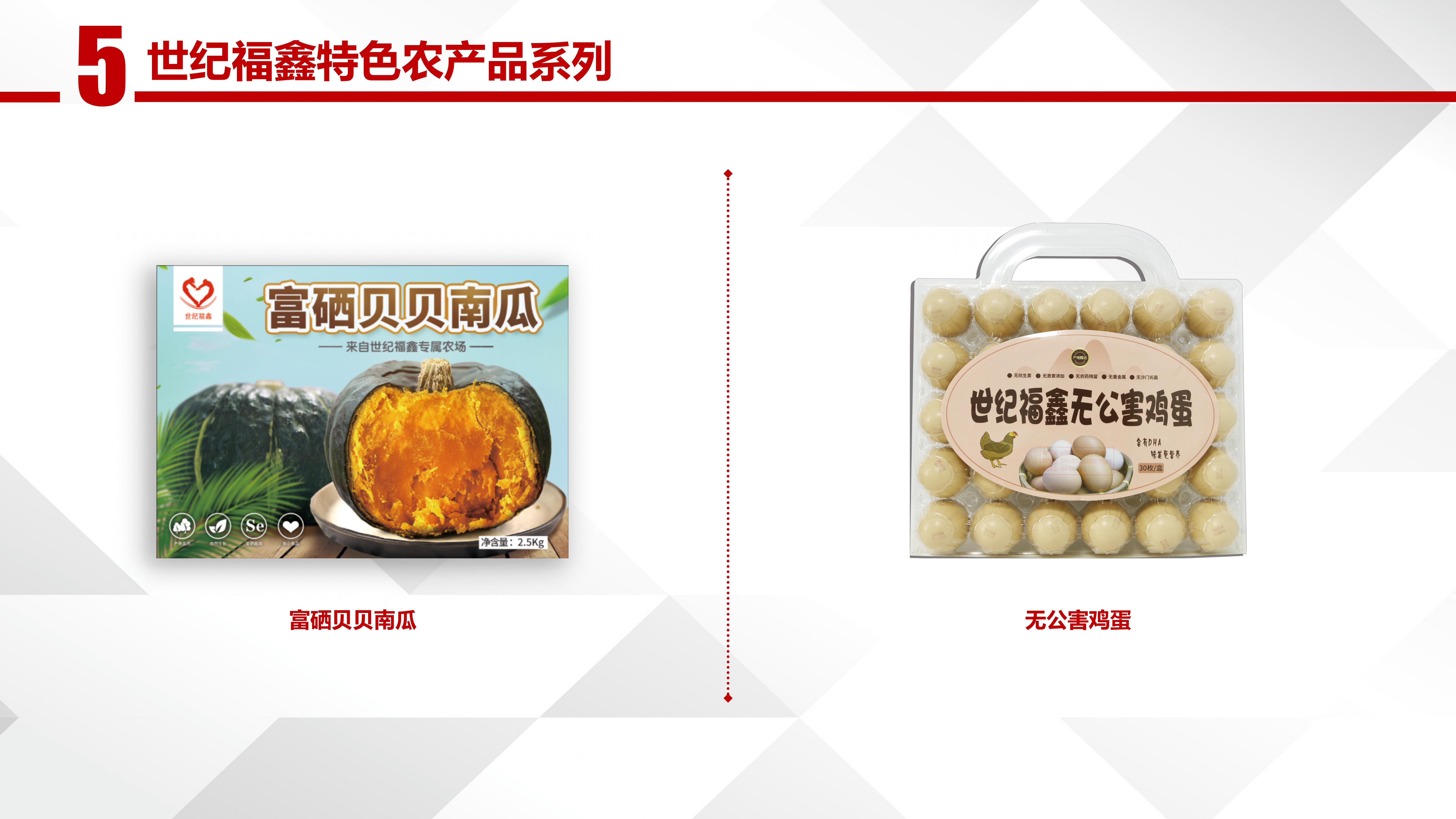 福鑫产品图册(人保)_05