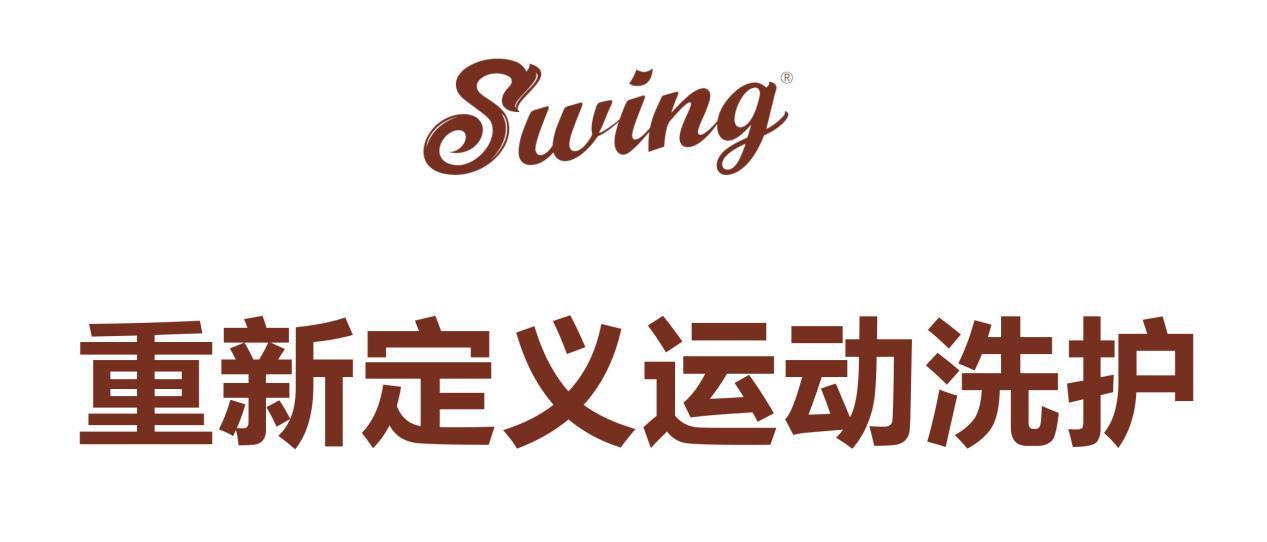 SWING产品介绍-13