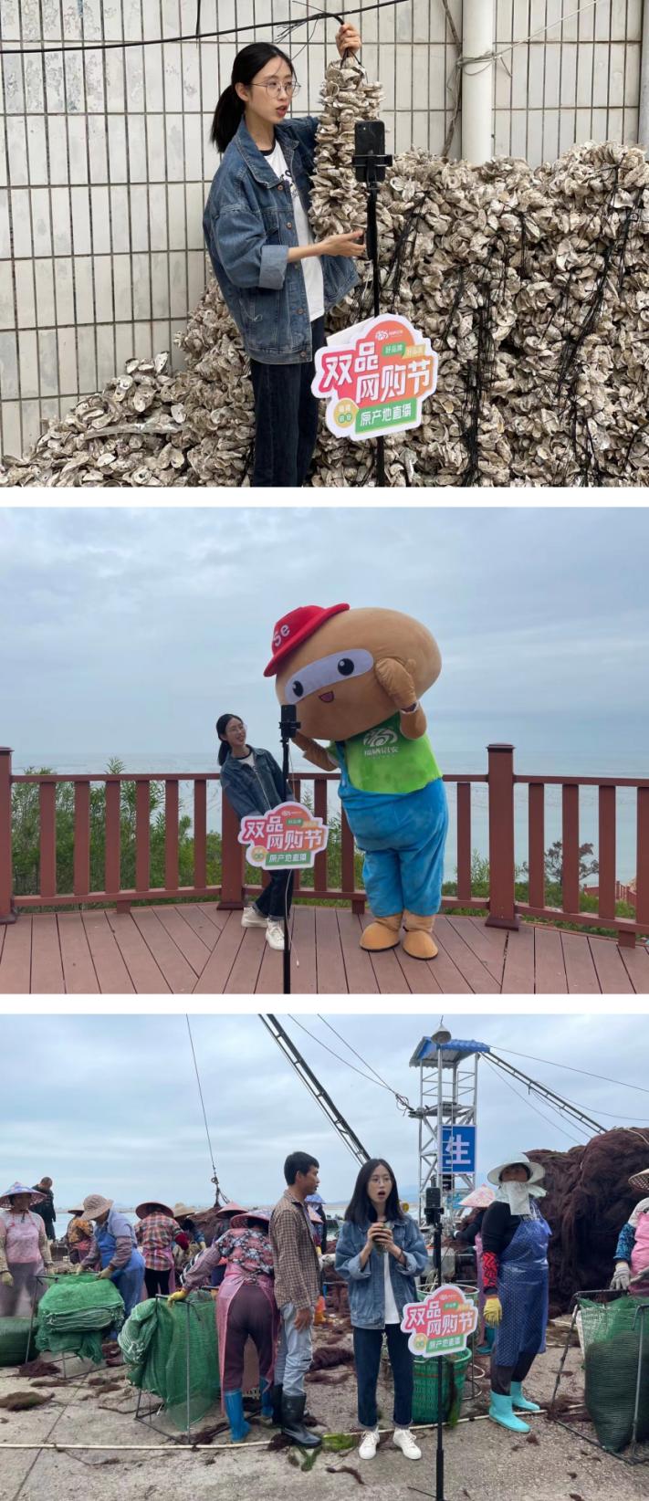 """【【第七站】""""中国生态牡蛎之乡""""——晴日赶海收牡蛎!】图4"""